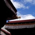 チベットの写真4